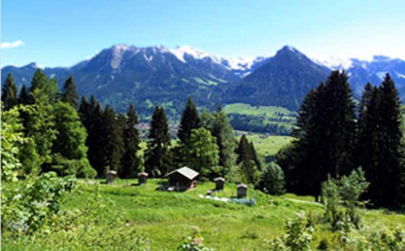 blick-obersdorf